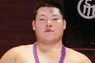 """日本大学相撲部 """"試合情報"""""""